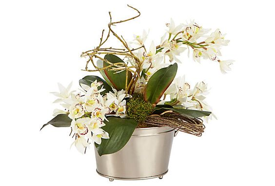 "18"" Orchids in Silver Bucket, White on OneKingsLane.com"