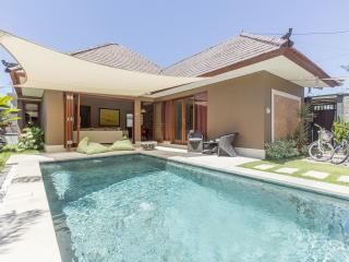 Exciting Luxury 2 bedrooms pool Villa in Sanur - Sanur vacation rentals