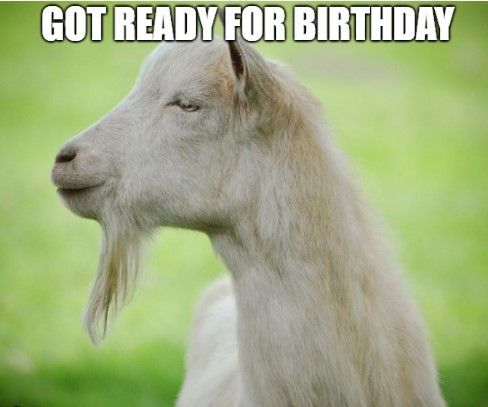 150 Most Viral Funny Happy Birthday Memes Ever Happy Birthday Meme Funny Happy Birthday Meme