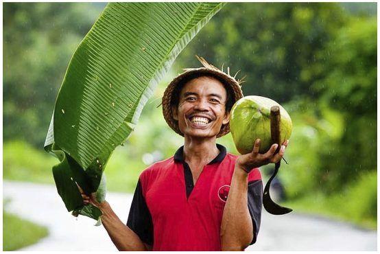 Banana Leaf Umbrella, Bali - by Jack Kurtz