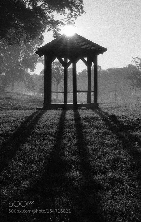 Morning in the park by JosipaVragolov. @go4fotos
