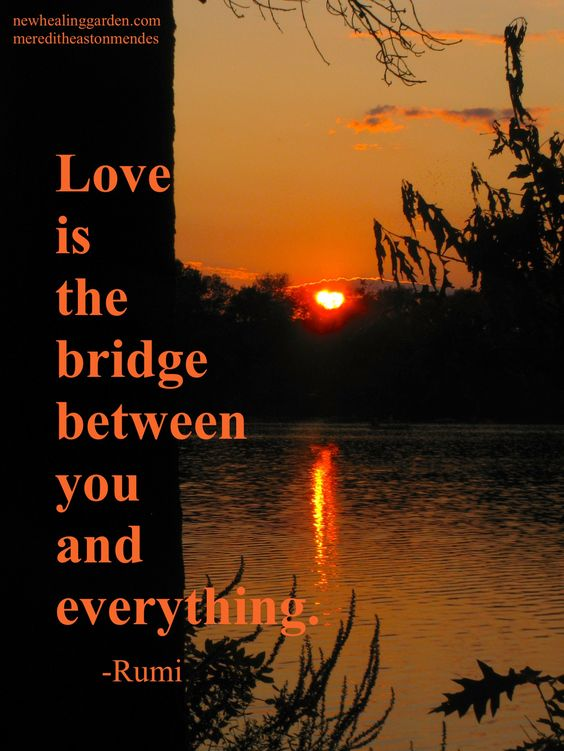 Love is the bridge between you and everything - Rumi