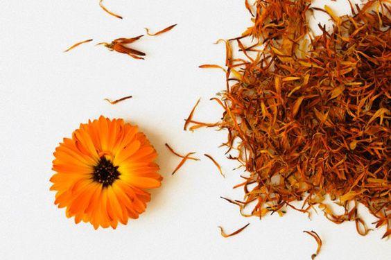 Cinco remedios naturales para cada mal
