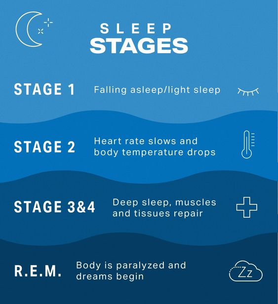 Understanding Sleep Cycles and How to Improve Sleep | MyFitnessPal