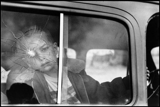 by Elliott Erwitt: