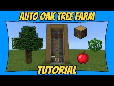 Automatic Oak Tree Farm Tutorial Minecraft Bedrock Edition Mcpe Youtube Minecraft Farm Minecraft Tutorial Minecraft Automatic Farm