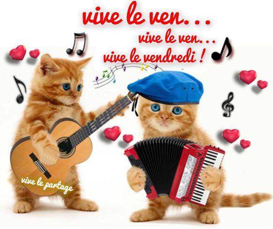 Vive le ven... vive le ven... vive le vendredi ! #vendredi bon vendredi humour chat chaton musique drole