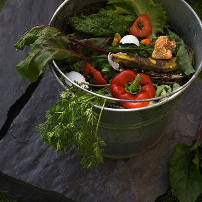 http://ecostrategies.biz/2010/08/kitchen-greens/  Greening your kitchen can make a dramatic impact on your carbon footprint, your eco-mindedness, and your green thumb. Check out the list below for 5 easy ways to green your kitchen.