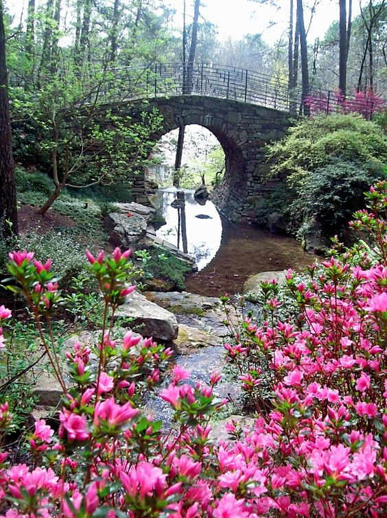 Garvan Woodland Gardens Hot Springs Arkansas