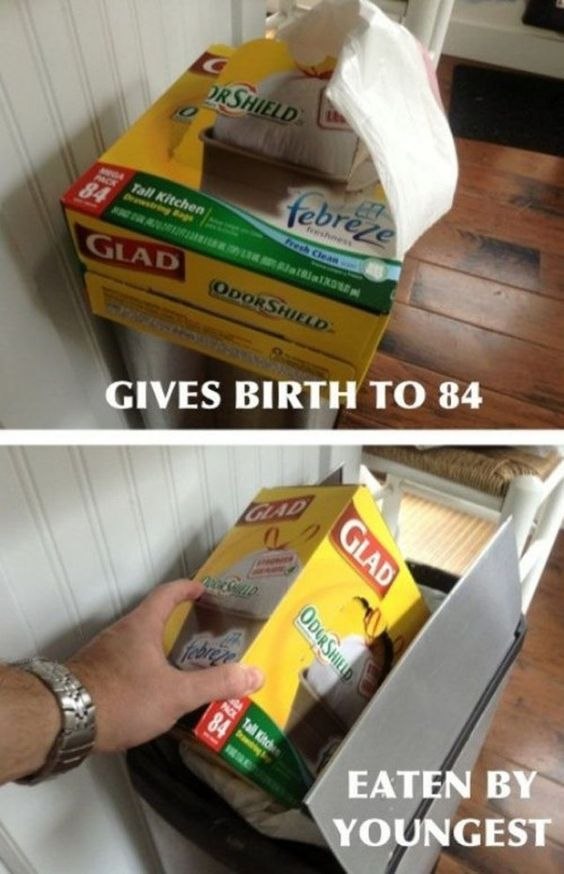 Glad Bags   // funny pictures - funny photos - funny images - funny pics - funny quotes - #lol #humor #funnypictures