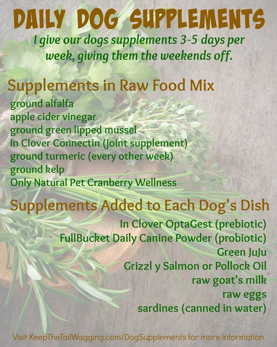 supplement canine guidelines