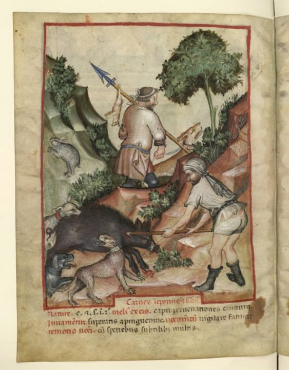 Nouvelle acquisition latine 1673, fol. 91v, Chasse. Tacuinum sanitatis, Milano or Pavie (Italy), 1390-1400.