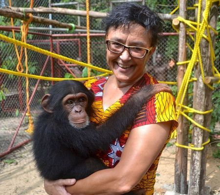 Adorable Little Baby Chimpanzee being cared for by a Keeper