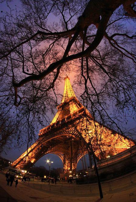 source: photographer | Paris  » similar photos