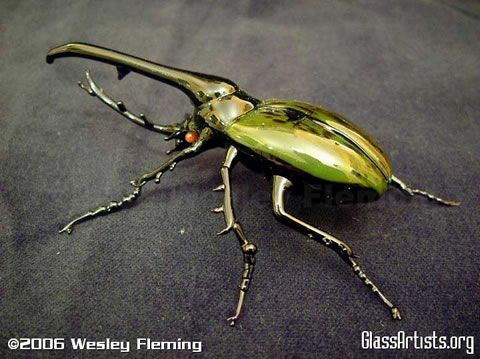 Google Image Result for http://static.neatorama.com/images/2006-06/glass-insect.jpg