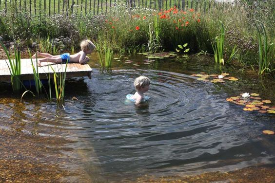 The plunge pool is a proper organic pool (natural swimming pool), only smaller. And this one is small enough to fit in a modest garden to bring the delights of plunging into organic water to more of us. (Click image for FAQs & instruction for making one.)