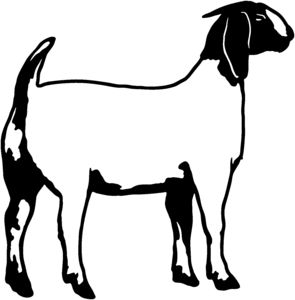 Boer Goat Clip Art Do Not Have To Own Goats Or Have Any