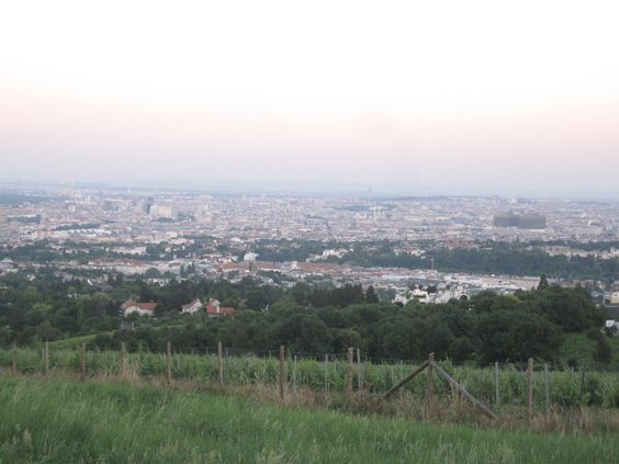 My favorite place to have a picnic while overlooking Vienna, Austria