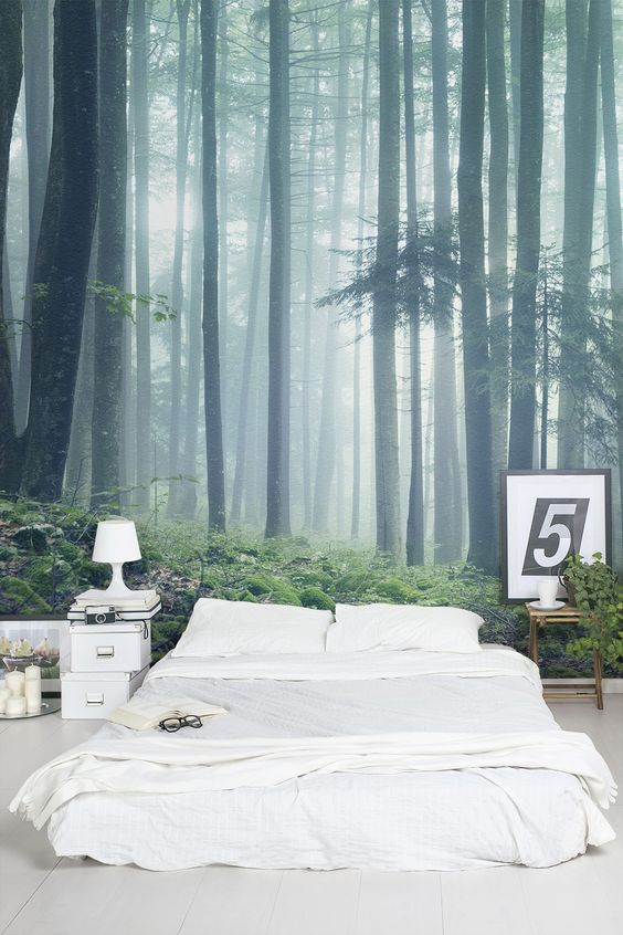 Get lost in the woods with this forest wallpaper mural