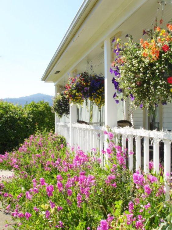 Pinterest the world s catalog of ideas for Front porch hanging plants