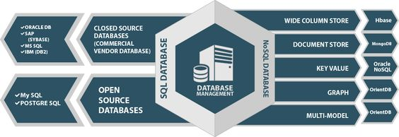 Wenso provides expert database management services for Oracle, Oracle E-Business Suite, SQL Server, MySQL, DB2 and MongoDB database environments.