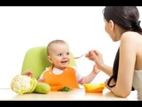 O Que Dar Para Bebe De 6 Meses Comer Cardapio Para Bebe De 6 Meses