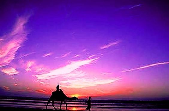 Tangiers, Morocco ... beach, sky and camel.  | Maroc Désert Expérience | http://www.marocdesertexperience.com #maroc #morocco #marruecos #marocco