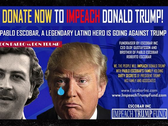 Impeach Trump Go Fund Me Campaign poster