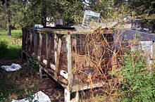 Puppy mill - Wikipedia, the free encyclopedia