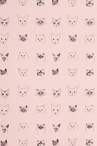 Cats Wallpaper by Baines & Fricker