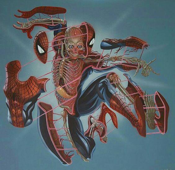 Spiderman Split By @nychos on Instagram