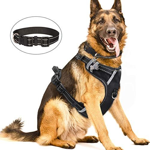 Winsee Dog Harness No Pull Pet Harnesses With Dog Collar