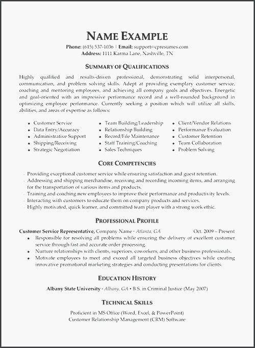 30 Executive Summary Resume Sample Resume Objective Examples Resume Examples Customer Service Resume