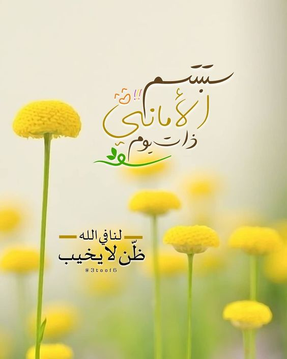 صروح المجد On Instagram ستبتسم الأماني ذات يوم لنا في الله ظ ن لا يخيب Axplore E Good Morning Arabic Islamic Quotes Quran Good Morning Images