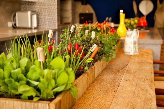 Veja fotos de 50 hortas em apartamentos dispostas de maneiras diferentes. Inspire-se.: