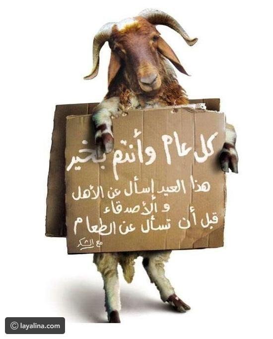 رسائل معايدات عيد الأضحى ٢٠١٧ ليالينا Eid Mubarak Eid Mubarak Pic Happy Eid
