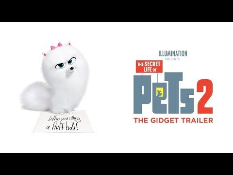 The Secret Life Of Pets 2 2019 The Gidget Trailer