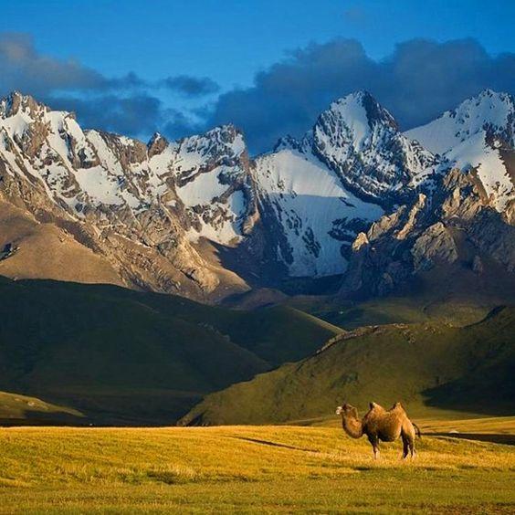 #thegreatsilkroad #triptokg #trip #travel #traveling #travelgram #adventure #history #Padgram