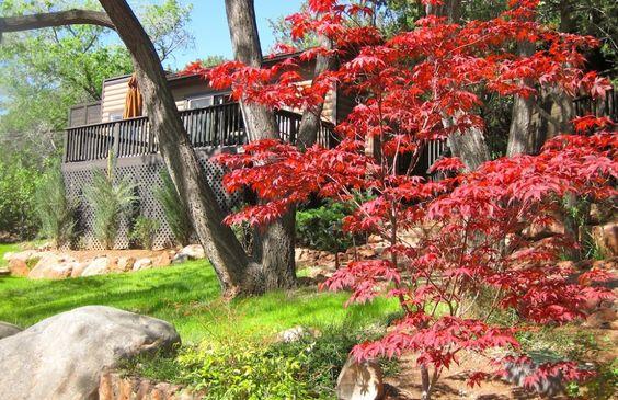 L'Auberge de Sedona: Inn, De Sedona, Fairytale Homes, Wedding Ideas, Friends Wedding, Wishful Fairytale, Vacation Domestic, Wedding Venues