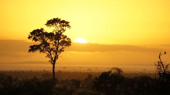6h00 lever de soleil Africain sur le Park Kruger - Afrique du sud