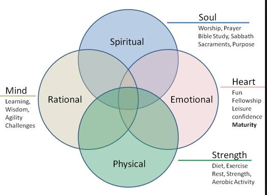 soul and body theories If we believe that the soul is to be controlled by the body then soul misses understanding of the soul and developed their own theories on the soul.