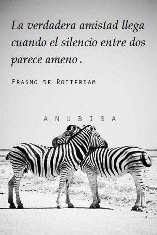 Erasmo de Rotterdam habla en esta frase, compartida en Facebook por Anubisa   de poder compartir el silencio en paz. Situación que describe a la amistad genuina , a las relaciones construidas des...