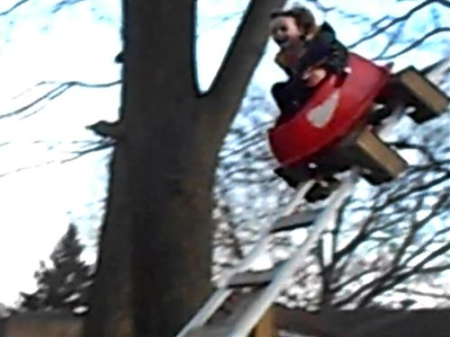 Boy rides 12-ft drop on backyard roller coaster built by his parents