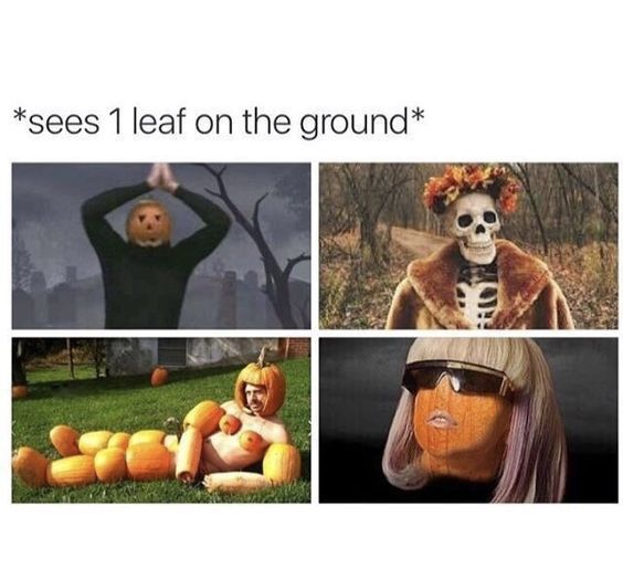 What Happens When I See One Leaf On The Ground Mega Memes Lol Funny Halloween Memes Halloween Memes Very Funny Pictures
