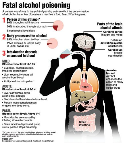 an introduction to the devastating condition of alcoholism symptoms causes and effects Common causes of cirrhosis are: long-term alcohol abuse hepatitis b and c infection fatty liver disease toxic metals genetic diseases hepatitis b and c together are said to be the leading causes of cirrhosis other causes include: regularly drinking too much alcohol toxins, including alcohol, are broken down by the liver.