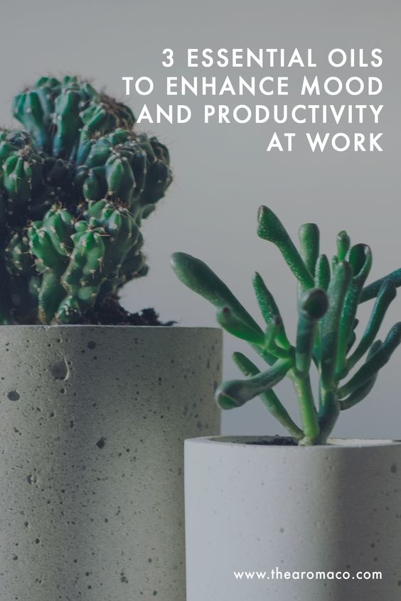 Essential Oils For Mood And Productivity At Work | TheAromaCo.com