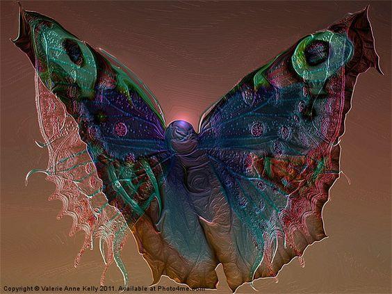 La Mariposa stunning