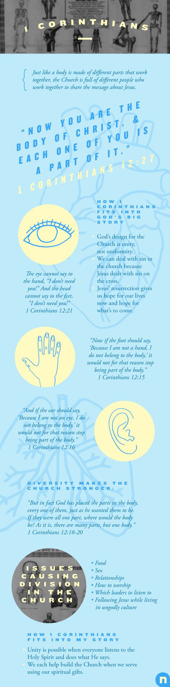 Everything You Need To Know About 1 Corinthians | Articles | NewSpring Church