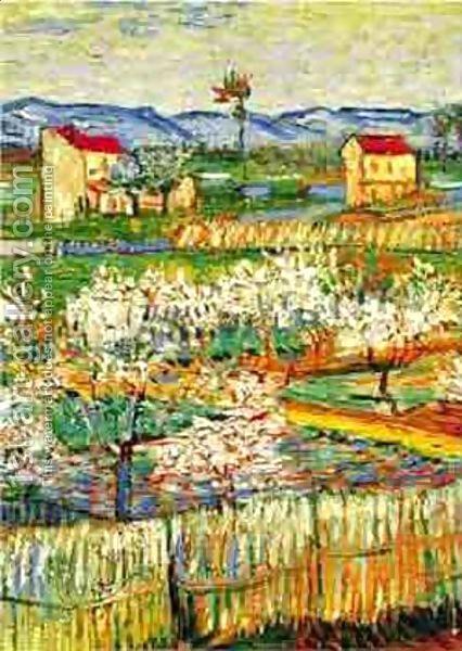 Vincent van Gogh - Peach Trees In Bloom, 1888