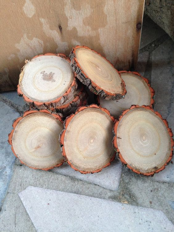 25 qty 3 to 4 wood slices tree branch slices use for by JTLWoods NEW